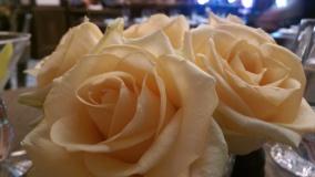 Flowers in Les deux salons